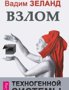 Взлом техногенной системы - Вадим Зеланд
